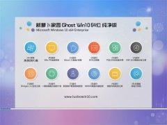 新萝卜家园Windows10 抢先纯净版64位 2021.04